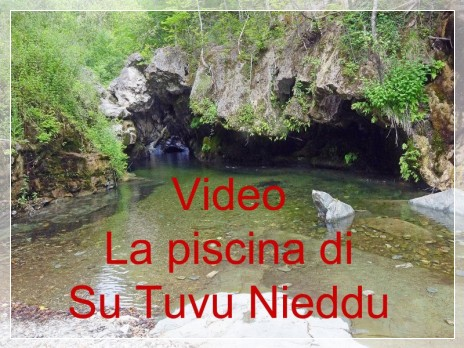 Vai al capitolo VIDEO LA PISCINA DI SU TUVU NIEDDU  Go to section VIDEO LA PISCINA DI SU TUVU NIEDDU