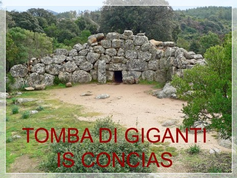 Vai al capitolo TOMBA DI GIGANTI IS CONCIAS. Go to section TOMBA DI GIGANTI IS CONCIAS